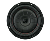 10 inch 2 ohm single voice coil
